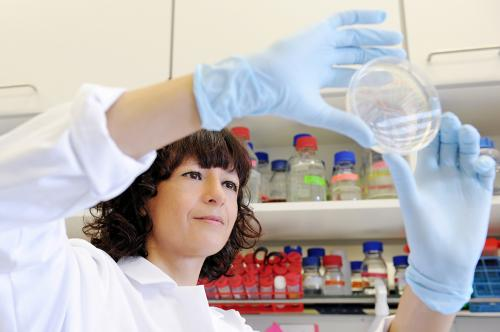 portrait photos of emmanuelle charpentier and lab members